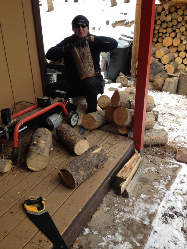 My son Paul tackled part of my woodpile in February 2014.